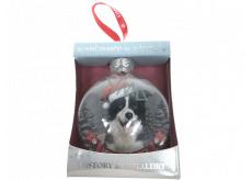 Albi Skleněná vánoční ozdobička se zvířátky - Border kolie 7,5 cm x 8 cm x 3,6 cm