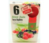 Tea Lights Forest Fruits s lesní vůní vonné čajové svíčky 6 kusů