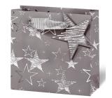 BSB Luxusní dárková papírová taška 23 x 19 x 9 cm Zimní nátěry VDT 411 - CD