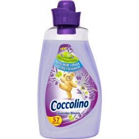 Coccolino Lavender Bloom koncentrovaná aviváž 57 dávek 2 l