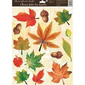 Room Decor Okenní fólie bez lepidla podzimní listí s žaludy 42 x 30 cm 1 kus