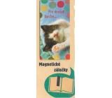 Albi Magnetická záložka do knížky Pro dnešek končím 9 x 4,5 cm