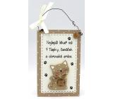 Nekupto Mazlíčci Dřevěná cedulka Nejlepší lékař má 4 tlapky ... kočka 11 x 17 cm