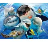 Prime3D magnet - Ocean Selfie 9 x 7 cm