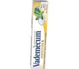 Vademecum Perfection 5 se šalvějovým výtažkem zubní pasta 75 ml