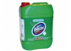 Domestos 24h Pine Fresh tekutý desinfekční a čisticí prostředek 5 l