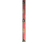 Ditipo Dárkový balicí papír 70 x 200 cm Vánoční Disney Princezny v kolečkách růžový