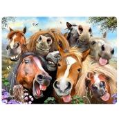 Prime3D pohlednice - Koně Selfie 16 x 12 cm