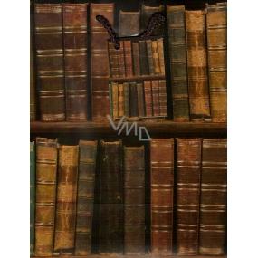 Nekupto Dárková papírová taška střední 23 x 18 x 10 cm Knihy 1 kus 813 01 BM