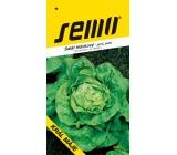 Semo Salát hlávkový Král máje - jarní, polní 0,4 g