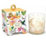 Michel Design Works Paradise Sojová ručně vyrobená vonná svíčka ve skle 184 g