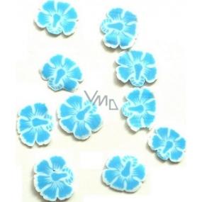Professional Ozdoby na nehty květiny modro-bílé 132 1 balení