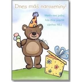 Ditipo Hrací přání Dnes máš narozeniny Stanislav Hložek Méďa Béďa 224 x 157 mm