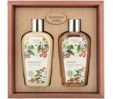 Bohemia Gifts Kofein sprchový gel 250 m + šampon 250 ml, kosmetická sada