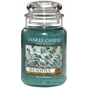 Yankee Candle Eucalyptus - Eukalyptus vonná svíčka Classic velká sklo 623 g
