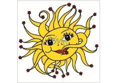 Okenní fólie bez lepidla sluníčko 33 x 35 cm 1 kus