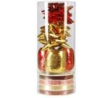 Ditipo Set k balení dárků zlato-červený 2811905