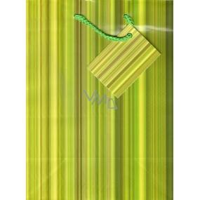 Nekupto Dárková papírová taška 23 x 18 x 10 cm Zelené pruhy 1 kus 622 50 KAM