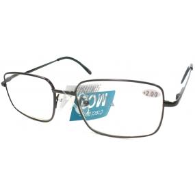Berkeley Čtecí dioptrické brýle +2,0 černé kov MC2 1 kus ER5050