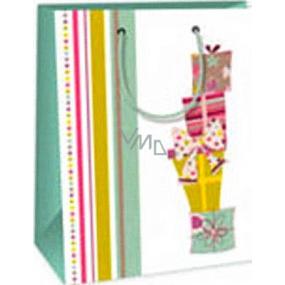 Ditipo Dárková papírová taška 18 x 10 x 22,7 cm bílá dárky mašle