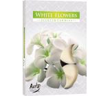 Bispol Aura White Flowers - Bílé květy vonné čajové svíčky 6 kusů