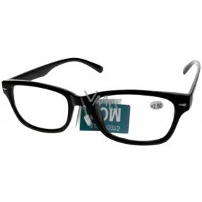 Berkeley Čtecí dioptrické brýle +3,0 plastové černé 1 kus MC2079