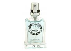 NG Dominus Men toaletní voda pro muže 15 ml
