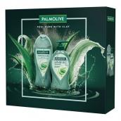 Palmolive Purifying Clay sprchový gel s jílem 250 ml + tekuté mýdlo dávkovač 250 ml, kosmetická sada