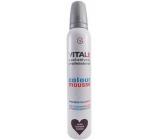 Vitale Exclusively Professional barvící pěnové tužidlo s vitaminem E Plum - Švestka 200 ml