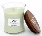 WoodWick Sweet Lime Gelato - Sladká zmrzlina vonná svíčka s dřevěným knotem a víčkem sklo velká 609,5 g