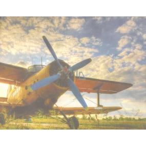 Nekupto Dárková kraftová taška malá 23 x 18 x 10 cm Letadlo 1 kus 240 CM