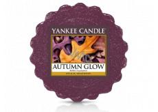 Yankee Candle Autumn Glow - Zářivý podzim vonný vosk do aromalampy 22 g