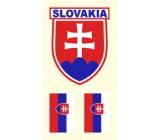 Arch Tetovací obtisky na obličej i tělo Slovenská vlajka 2 motiv