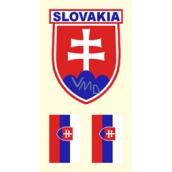 Arch Tetovací obtisky na obličej i tělo Slovensko vlajka 2 motiv