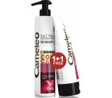 Delia Cosmetics Cameleo BB Keratinový šampon pro barvené a melírované vlasy 250 ml + kondicionér 200 ml, duopack