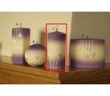 Lima Rozkvetlá louka svíčka světle fialová válec 60 x 120 mm 1 kus