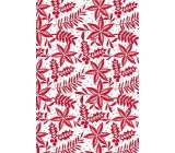 Ditipo Dárkový balicí papír 70 x 200 cm Bílý červené větvičky