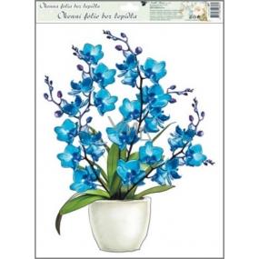 Room Decor Okenní fólie orchideje modrá 42 x 30 cm