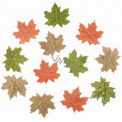 Dřevěné listy 4 cm 12 kusů