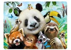 Prime3D pohlednice - Zoo Selfie 16 x 12 cm