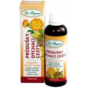 Dr.Popov Průdušky & dýchací cesty originální bylinné kapky 50 ml