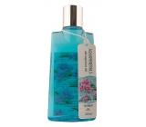 Bohemia Gifts & Cosmetics Aqua Minerály Magneziová sůl 2v1 sprchový gel a vlasový šampon 200 ml