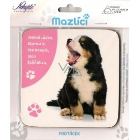 Nekupto Mazlíci podtácek 012 Bernský salašnický pes