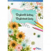 Ditipo Calm Rozkvetlé květiny omalovánky 16 listů