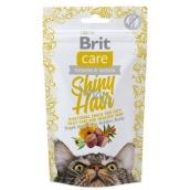 Brit Care Cat Snack Shiny Hair Losos pamlsek poloměkké doplňkové krmivo pro kočky 50 g