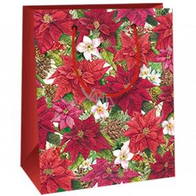 Ditipo Dárková papírová taška 11,5 x 6,5 x 14,5 cm Vánoční hvězda E
