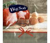 Big Soft Papírové ubrousky 2 vrstvé 33 x 33 cm 20 kusů Vánoční Jablka, skořice, ořechy
