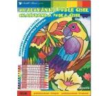 Omalovánka podle čísel s 10 krajony papoušek 29 x 24 cm