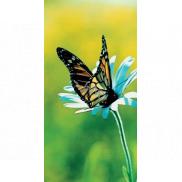 Albi Magnetická záložka do knížky Motýl na květině 8,7 x 4,4 cm