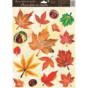 Room Decor Okenní fólie bez lepidla podzimní listí s kaštany 42 x 30 cm 1 kus